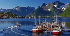 Работа в Норвегии для русских вакансии 2019 без знания языка