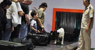 Что можно брать в багаж самолета 2020: Украина